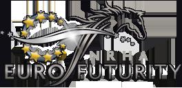 logo NRHA-FUTURITY 2013