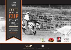 Plakat Juni 1+2, 2013
