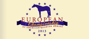 Logo EM 2013