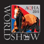 2015 WS logo